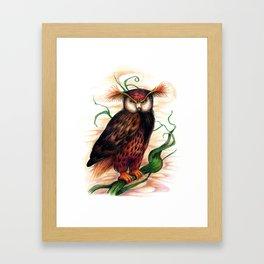 Sunset owl Framed Art Print