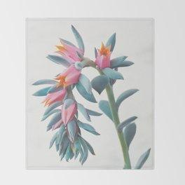 Succulent Cluster Throw Blanket