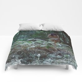 Redefinition Comforters