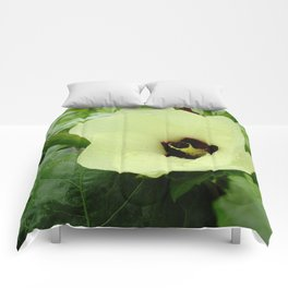 Velvet Butter Comforters