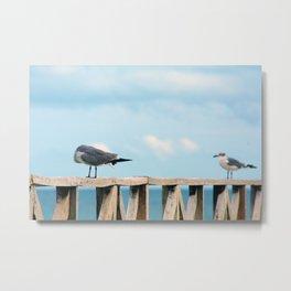 Bird collection _02 Metal Print