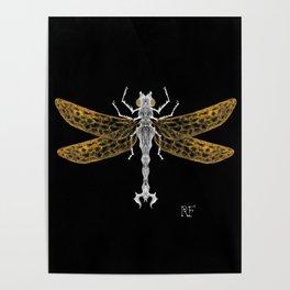 Royal Dragonfly Poster