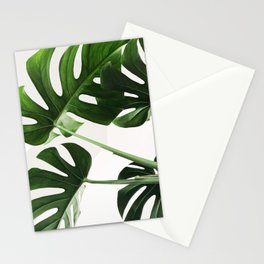 CloseUp Monstera Stationery Cards