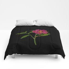Cistus Formosus Mary Delany Delicate Paper Flower Collage Black Background Floral Botanical Comforters