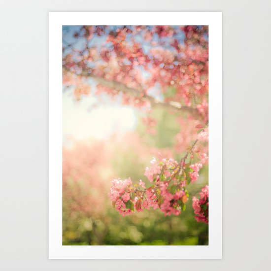 spring scene Art Print
