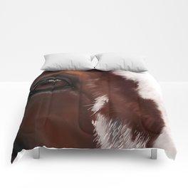 Draft war horse Comforters