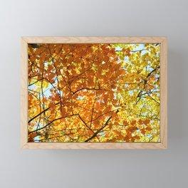 Majestic Autumn Framed Mini Art Print