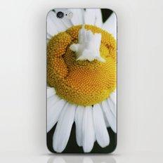 Matricaria iPhone & iPod Skin