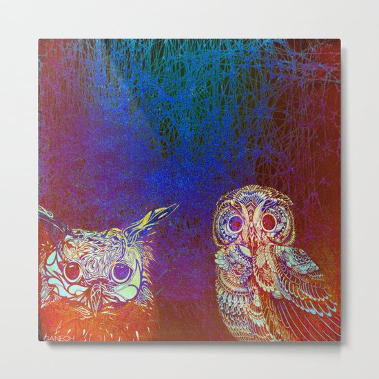 Owls at night Metal Print
