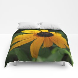 Golden glow of a black-eyed Susan Comforters