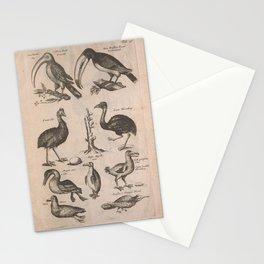 057-pica, emeu, anser, mergus5 Stationery Cards