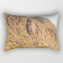 Landscape Joshua Tree 7344 Rectangular Pillow