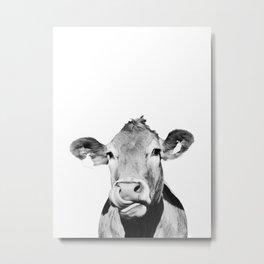 Cow photo - black and white Metal Print