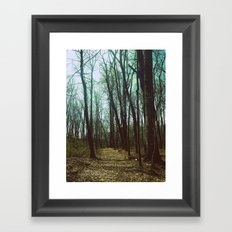 Deep Dark Woods Framed Art Print