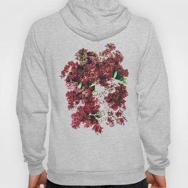 Burgundy Sedum Flowers Hoody