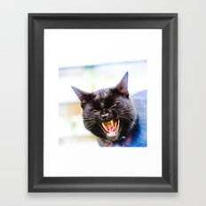 Angry black cat Framed Art Print