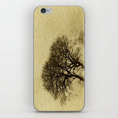 Just Trees iPhone & iPod Skin