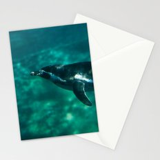 Spheniscus Humboldti II Stationery Cards