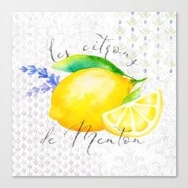 Les Citrons de Menton—Lemons and Lavender, Provence Canvas Print