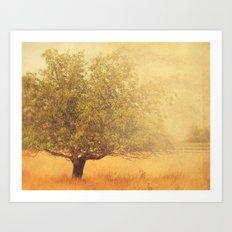 tree photograph. Solitude.  Art Print