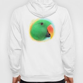 Green male eclectus parrot realistic painting Hoody