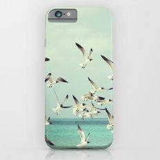 Seagulls in Flight iPhone 6s Slim Case