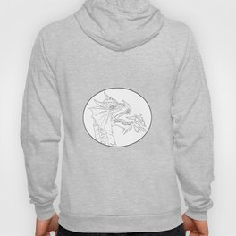 Dragon Fire Circle Drawing Hoody