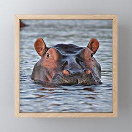 Big hippopotamus Framed Mini Art Print