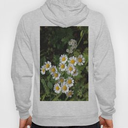 Nothing is Coming Up Daisies Hoody