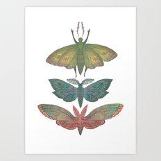 Saturn Moths Art Print