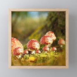 Beautiful but toxic - Fly agaric - Amanita - Autumn illustration - #society6 #buyart Framed Mini Art Print