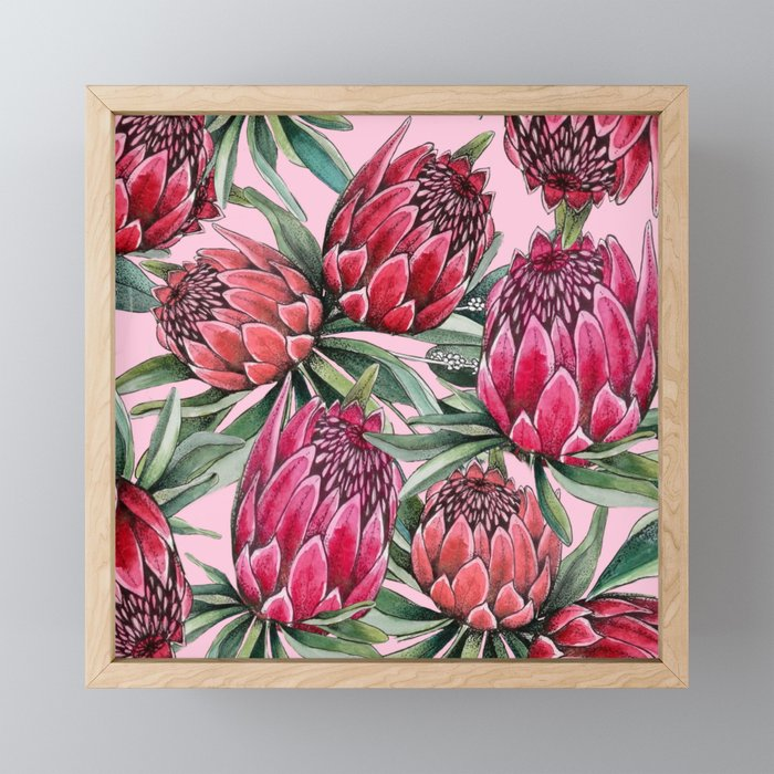 Protea Water color on pale pink Framed Mini Art Print