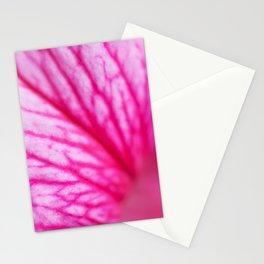 Petunia 3 Stationery Cards