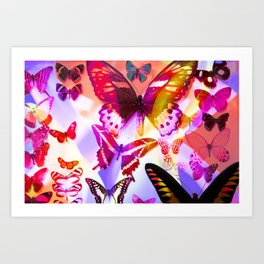 Multicolour Rainbow Butterflies II Art Print