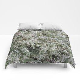 White Moss Comforters