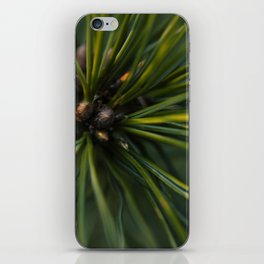 The Pine iPhone Skin