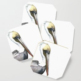 Pelican Portrait Coaster