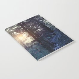 A walk in the forest Notebook