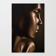 the doll from the baby blue house Canvas Print