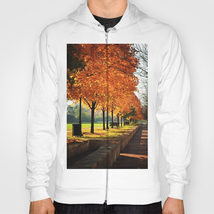 Urban Fall Hoody