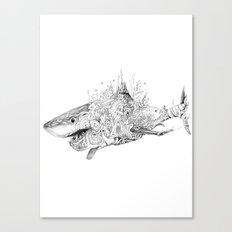 Sea Shark Canvas Print
