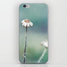 Charisma iPhone & iPod Skin