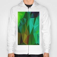 Vertices 5 Hoody
