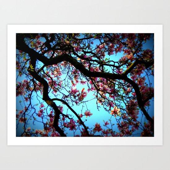 La Magnolia Art Print