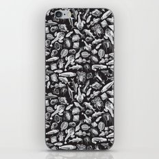 Aquatic I: White on Black iPhone & iPod Skin