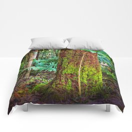 New and old rainforest growth Comforters