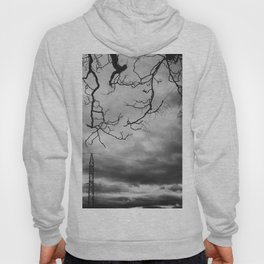 Electric branches. Branches Like Rays. Hoody