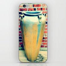 pott iPhone & iPod Skin