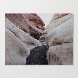 Mosaic Canyon Canvas Print