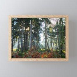 Great Owl Framed Mini Art Print